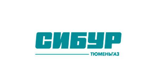 Логотип компании11
